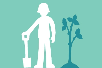 tree planting illustration