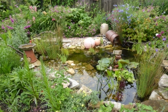 Wildlife friendly garden by Briony Baxter