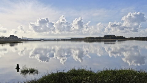 Lytchett Bay DWT/ARC Nature Reserve
