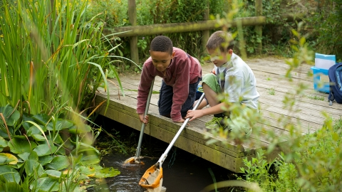 Children pond dipping at Lorton Meadows by Katharine Davies