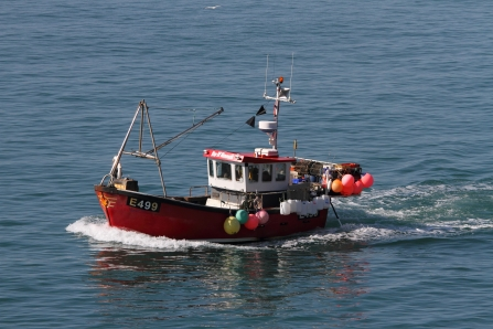 Traditional inshore fishing boat © Steve Davis