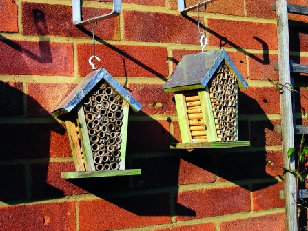 Bee hotel © Jane Adams