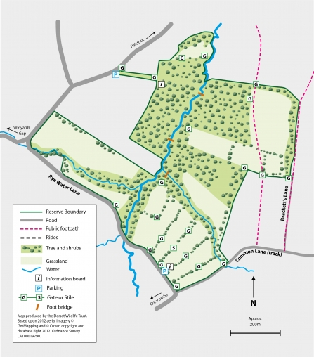 Bracketts Coppice Map Sept 2019